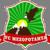 FC Mezopotamya Logo
