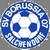 SV Borussia Salchendorf Logo