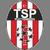 Türkiyemspor Plettenberg Logo