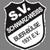 SV SW Buer-Bülse Logo