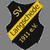 SV Langschede Logo