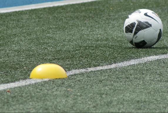 sport bundesliga fußball